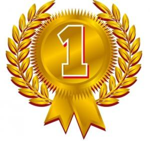 Gaymobil wint eerste prijs 2014